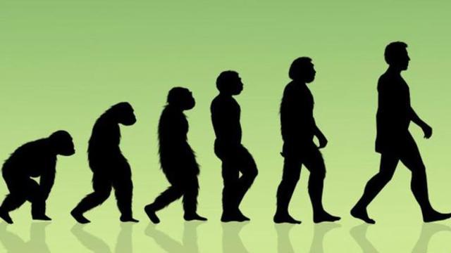 Müfredattan Evrim Çıktı Şeriat Geldi