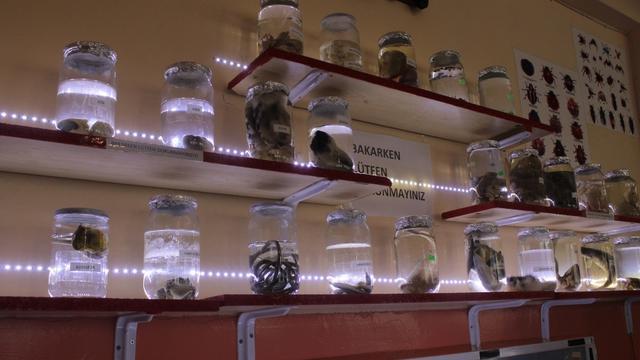 Lise öğrencilerinden Biyoloji Müzesi
